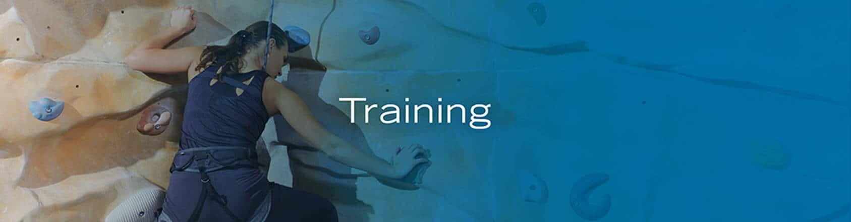 RefineM Training